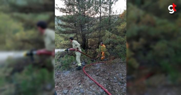 Kastamonu'da orman yangınında 2 hektar alan zarar gördü