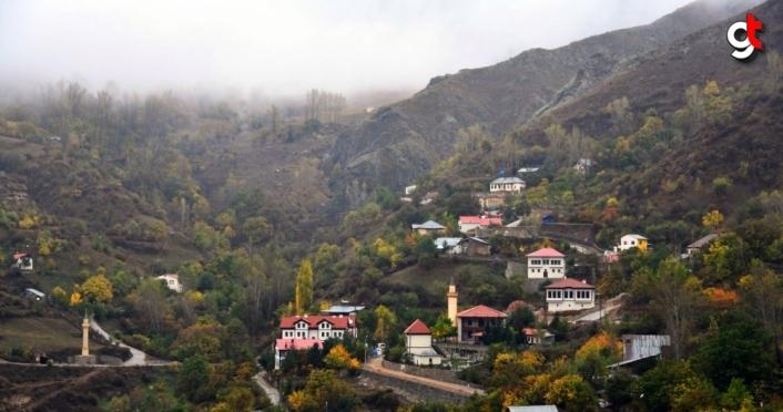 Süleymaniye Kış Sporları Turizm Merkezi'ne 12 milyon lira ödenek sağlandı
