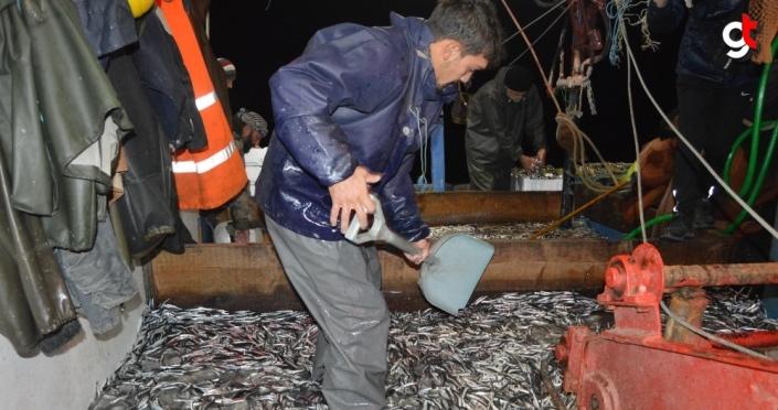 Bartın'da palamuda erken veda eden balıkçıların umudu hamside