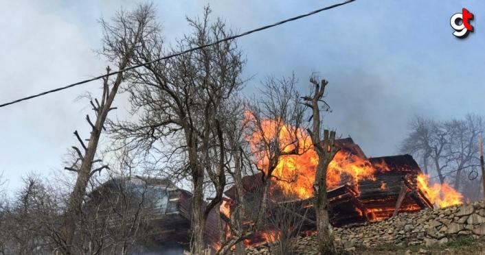 GÜNCELLEME 3 - Rize'de Gölyayla köyünde çıkan yangın kontrol altına alındı