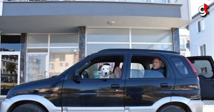 Hayvansever çift sokakta buldukları köpeğe araçlarını tahsis etti