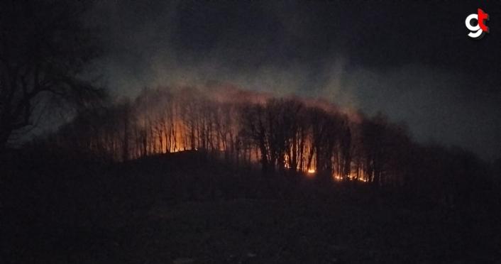 Ordu'da örtü yangını ormanlık alana sıçradı