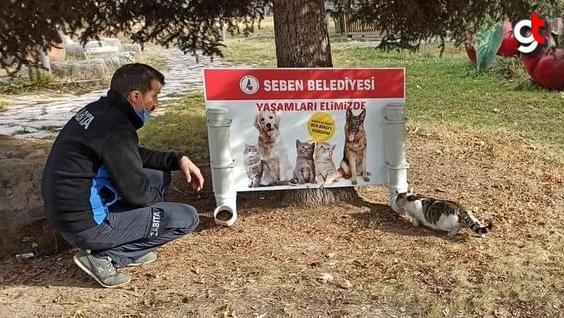 Seben'de sokak hayvanları için sokaklara yem aparatı yerleştirildi