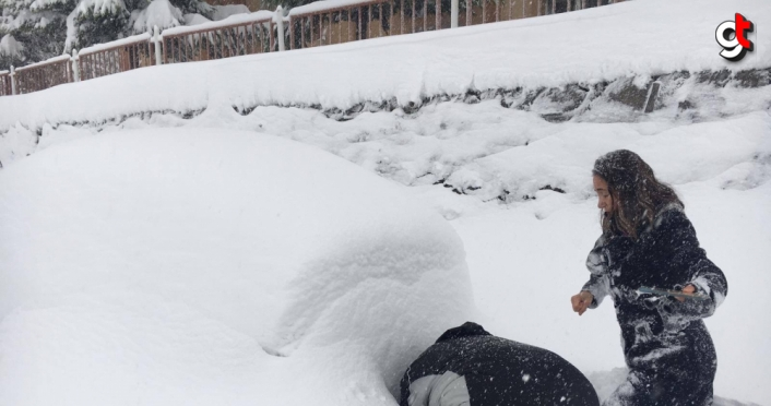 Zonguldak'ta karda mahsur kalan kediler kurtarıldı