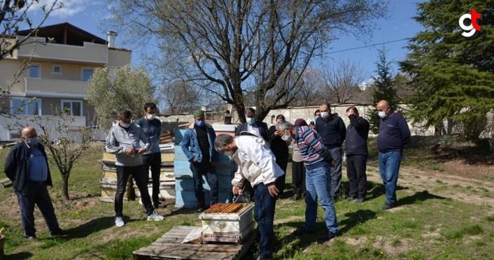 Karabük'te kursiyerlere uygulamalı arıcılık eğitimi