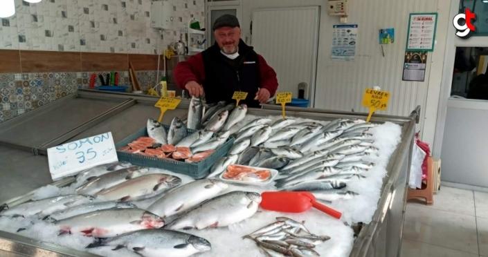 Sinop'ta tezgahlarda av balıklarının yerini havuz balıkları aldı