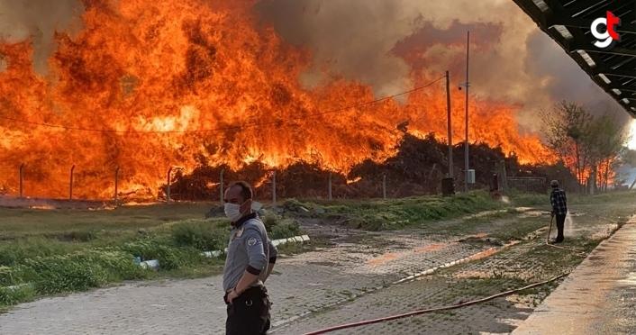 Afyonkarahisar Biyokütle Enerji Santrali'nde çıkan yangın için şirket açıklama yayınladı