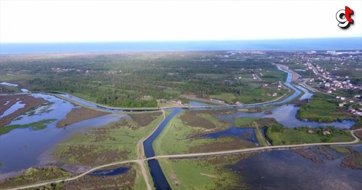Baharın gelmesiyle göz alıcı güzellikler sunan Kızılırmak Deltası ziyaretçilerini bekliyor