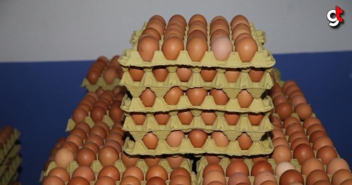 Ordu'da üretilen organik yumurtalar Dubai'de tüketiciyle buluşacak