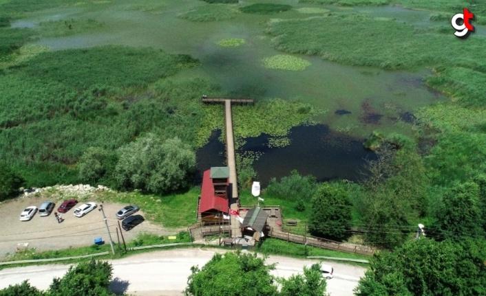 Efteni Gölü Kuş Cenneti kademeli normalleşmeyle