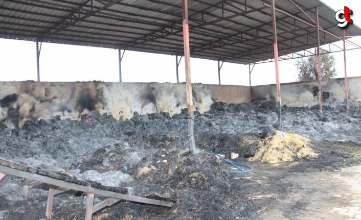 Amasya'da besi çiftliğinde çıkan yangın kontrol altına alındı
