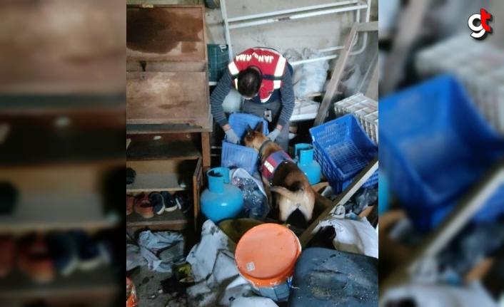 Trabzon'da uyuşturucu operasyonunda 2 şüpheli yakalandı