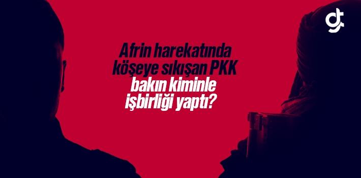 Afrin Harekatında Köşeye Sıkışan PKK Kiminle İşbirliği Yaptı?