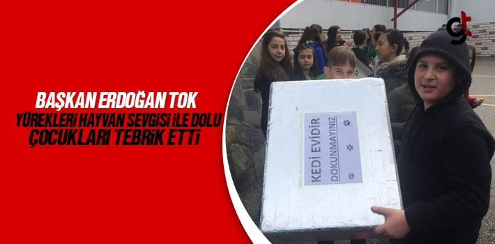 Başkan Erdoğan Tok, Yürekleri Hayvan Sevgisi İle Dolu Çocukları Tebrik Etti