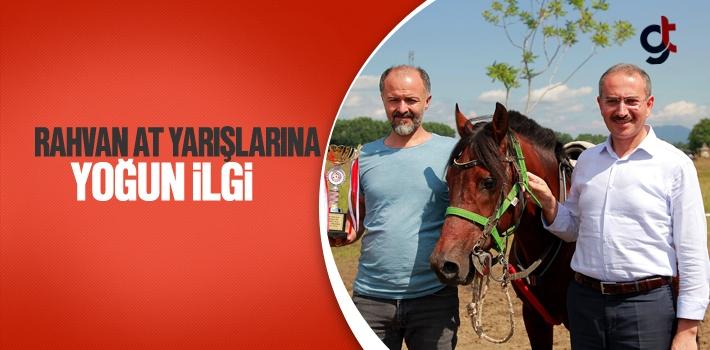 Çarşamba'da Rahvan At Yarışlarına Yoğun İlgi