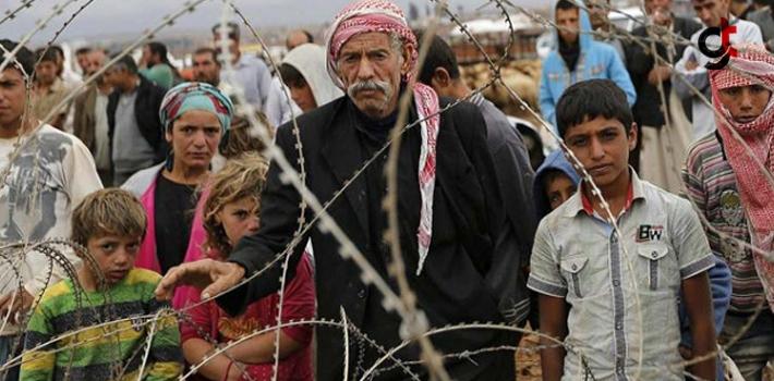 En Fazla Suriyelinin Yaşadığı Şehirler Hangileri!