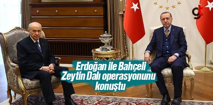 Erdoğan ile Bahçeli Afrin'e Zeytin Dalı Operasyonu Hakkında Görüştü