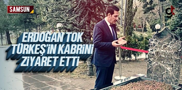 Erdoğan Tok, Türkeş'in Mezarında Dua Etti