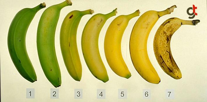 Hangi Renk Muzu Seçerdiniz? Vereceğiniz Cevap Sağlığınızı Yakından İlgilendiriyor, Muzun Faydaları