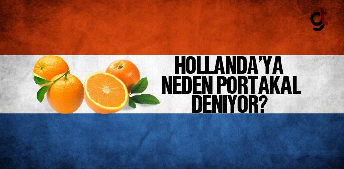 Hollandaya Neden Portakal Deniyor Hollanda Protestosunda Portakal