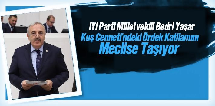İYİ Parti Milletvekili Bedri Yaşar Kuş Cenneti'ndeki Ördek Katliamını Meclise Taşıyor