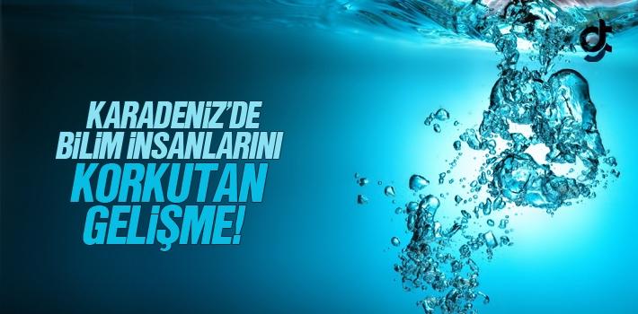 Karadeniz'de Bilim İnsanlarını Korkutan Gelişme