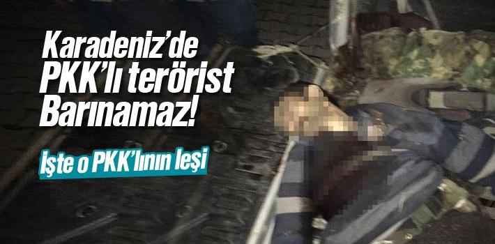 Karadeniz'de ki PKK'lı Terörist Öldürüldü