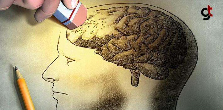 Kuru Meyveler Alzheimer Ve Demansın Ortaya Çıkma Riskini Azaltıyor