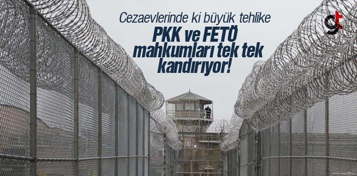 PKK ve FETÖ Cezaevlerinde ki Mahkumları Tek Tek Kandırıyor