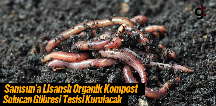 Samsun'a Lisanslı Organik Kompost Solucan Gübresi Tesisi Kurulacak