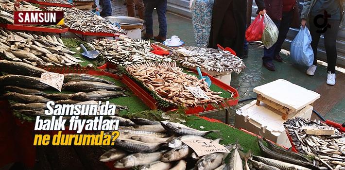 Samsun'da Balık Fiyatları Ne Durumda?