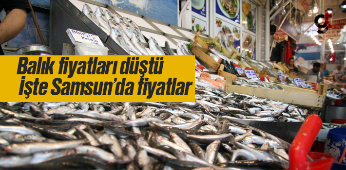 Samsun'da Balık Fiyatları Düştü, İşte Balık Fiyatları