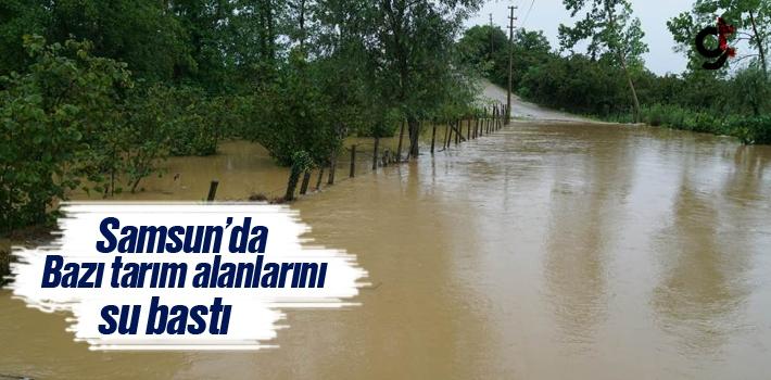 Samsun'da Bazı Tarım Alanlarını Su Bastı