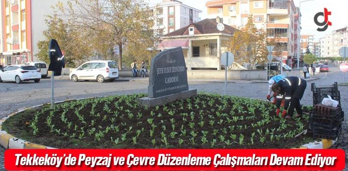 Tekkeköy'de Peyzaj ve Çevre Düzenleme Çalışmaları Devam Ediyor