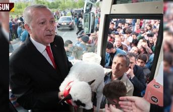 Erdoğan'a Samsun'da Kuzu Hediyesi
