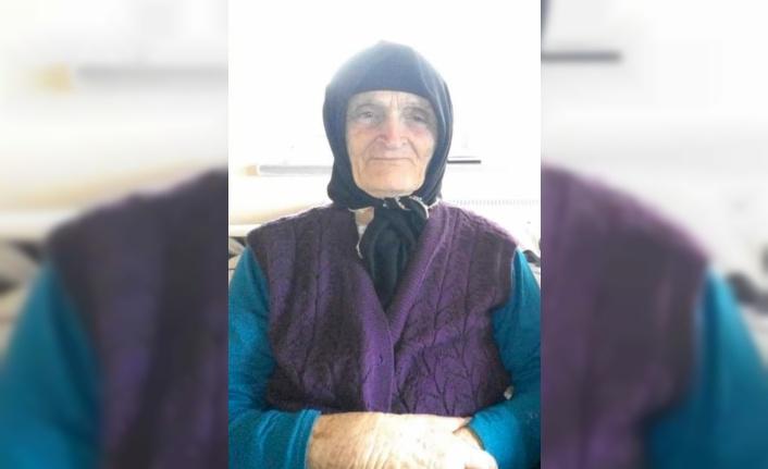 Ordu'da yaşlı kadın kayboldu