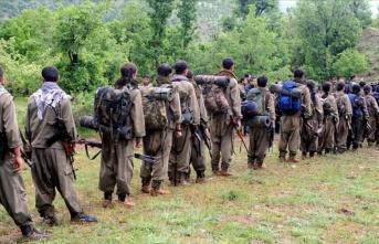 Yakalanan terörist PKK'nın tecavüz olaylarını...