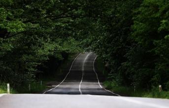 Safranbolu'nun ağaç tünelli yolları görenleri...
