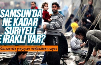 Samsun'da kaç Suriyeli ve Iraklı Mülteci Var?