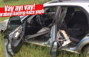 Vay ayı vay! Arabayı kaçırıp kaza yaptı