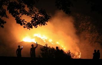 Adalet Bakanlığı orman yangınlarına ilişkin...