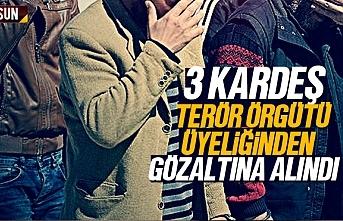Samsun'da 3 kardeş terör örgütü üyeliğinden gözaltına alındı