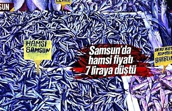 Samsun'da hamsi fiyatı 7 liraya düştü