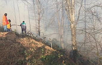 Karadeniz Bölgesi'ndeki tüm yangınlar kontrol altına...