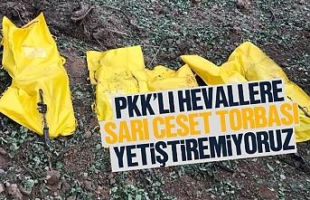 PKK'lılara sarı ceset torbası yetişmiyor, 124 terörist öldürüldü