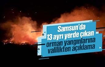 Samsun'da ayrı yerlerde çıkan 13 orman yangınına...