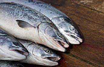 Küresel ısınma sofradaki balık çeşitliliğini...