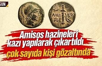 Amisos sikkesi ve hazineleri çıkartıldı, çok sayıda gözaltı