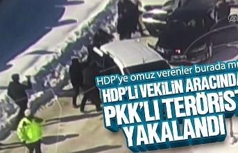 HDP'li vekilin aracında PKK'lı terörist yakalandı