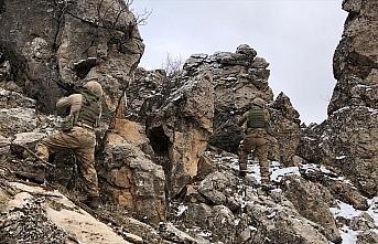 'Kapan-6 Müşterek Operasyonu'nda 10 kış sığınağı...
